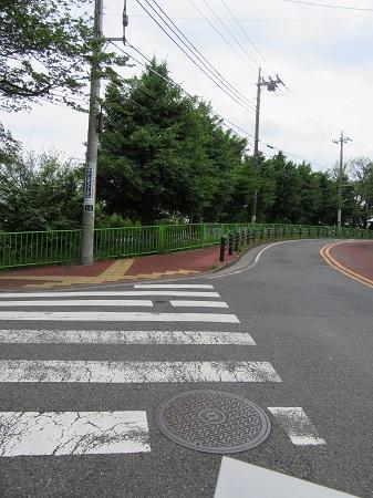 -11-絶対ここだね!歩道! (1).JPG