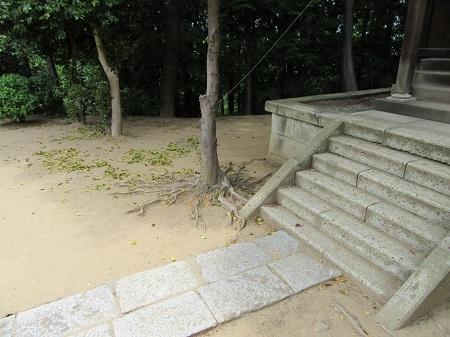 -14-告白の神社 (5).JPG