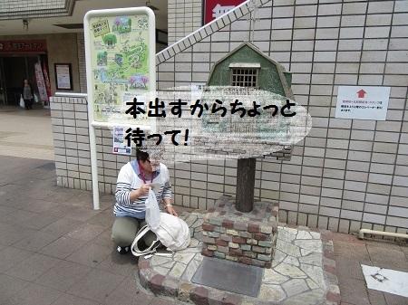 -3- 聖蹟桜ヶ丘駅 (2).JPG