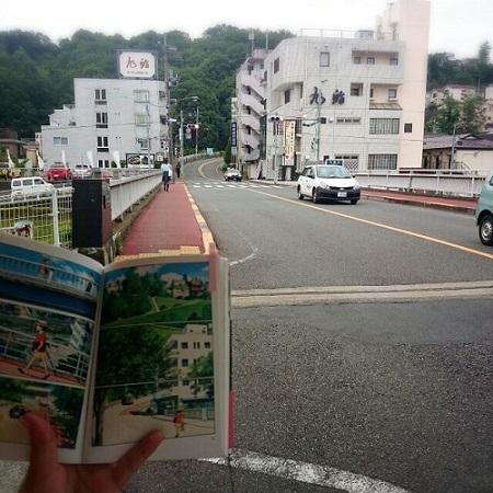-5- 橋~いろは坂 (2).jpg