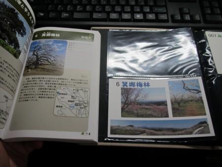 6番 箕郷梅林.JPG