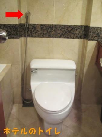 マレーシアのトイレにて (2).JPG