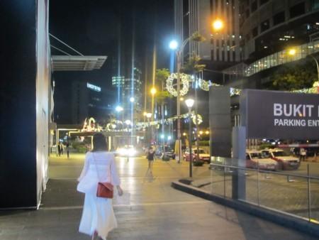 マレーシア:アロー通り 屋台街 (1).JPG