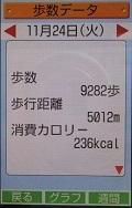 歩数データ 20151124.JPG
