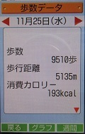 歩数データ 20151125.JPG