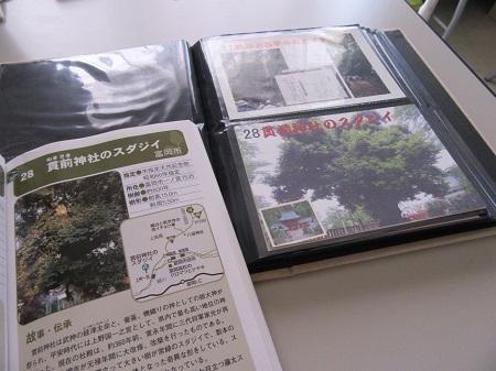 IMG_2318.JPG