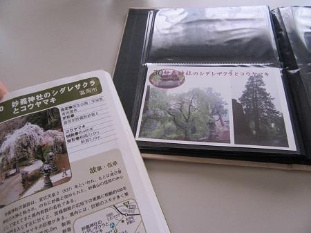 IMG_2319.JPG